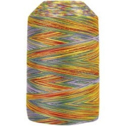 King Tut Egyptian Cotton Thread - 918 Joseph's Coat