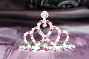 Princess Bridal Wedding Tiara Crown with Hot Pink Crystal DH14857c
