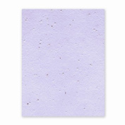 Grow-a-Note Plantable Seed Paper, 10 sheets, 20cm - 1.3cm x 28cm , Lavender