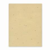 Grow-a-Note Plantable Seed Paper, 10 sheets, 20cm - 1.3cm x 28cm , Chai Tea