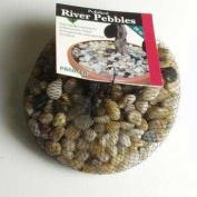 Panacea Products Corp. APN71015 Pan River Pebbles, 830ml, Mixed