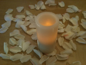 500 Ivory Silk Rose Petals Wedding Party Favours