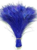 25 Pcs Peacock Feathers 25cm - 30cm Bleached ROYAL BLUE