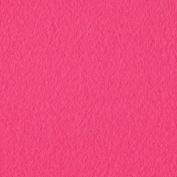 Wintry Fleece Azalea Pink Fabric