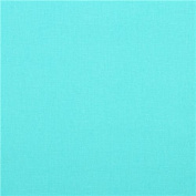 solid turquoise echino canvas fabric from Japan