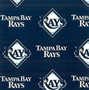 MLB Tampa Bay Rays Baseball Print Fleece Fabric By the Yard
