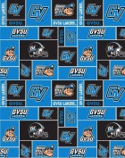 College Grand Valley State University Lakers GVSU Fleece Fabric Print by the Yard