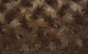 Luxurious Minky Rosebud Fabric - Chocolate Brown