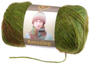 Lion Brand Yarn 825-202V Amazing Yarn, Rainforest