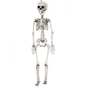Sunstar Industries 70cm Realistic Plastic Skeleton Halloween Decoration Prop