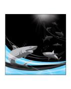 Sea World Sharks 30cm x 30cm Scrapbook Paper