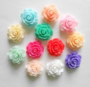 LOVEKITTY 5 pieces Rose Flower Flat back Resin Cabochons Kawaii Deco (assorted colours) 21mm