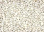 Seed Beads 10/0 Czech Matte Finish Crystal