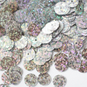 10mm ROUND FLAT SEQUINS ~ SILVER HOLOGRAM Metallic ~ Loose sequins paillettes for embroidery, applique, arts, crafts, bridal, and embellishment. Made in USA