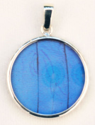 Blue Morpho Butterfly Wing Medium Round Pendant