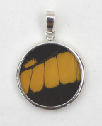 American Swallowtail Butterfly Wing Medium Round Pendant
