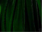 GREEN RAYON VELVET FABRIC, BY SOUTH BEACH FABRIC