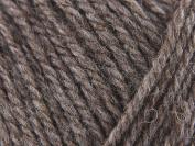 Patons wool blend aran - taupe