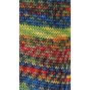 Regia 4 Ply Wool Colours 50g Yarn
