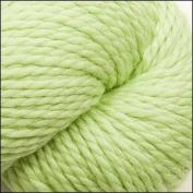 Cascade Yarns - Cascade 128 Superwash - LIME SHERBERT #850