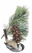 Maine State Bird and Flower Black-capped Chickadee and White Pine Cone and Tassel Counted Cross Stitch Pattern