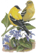 New Jersey State Bird and Flower Eastern Goldfinch and Violet Counted Cross Stitch Pattern
