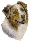 Australian Shepherd Dog Portrait Counted Cross Stitch Pattern