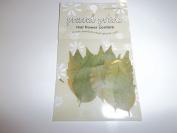 Scrapbook Embellishment Real Leaf