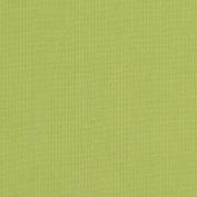 Sunbrella Spectrum Kiwi Indoor/Outdoor Fabric #48023-0000 By the Yard