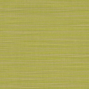 Sunbrella Fabric - Dupione Peridot #8024-0000