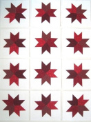 12 Applique Red Star Quilt Blocks 17cm Squares
