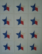 12 Applique Texas Star Quilt Blocks 17cm Squares