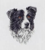 Maia Border Collie Mini Counted Cross Stitch Kit 4 3/4'X3' 18 Count
