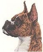 Pegasus Originals Boxer Brindle Counted Cross Stitch Kit