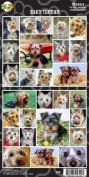 Pet Qwerks S58 Silky Terrier Sticker