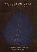 Blue Bo Leaf