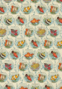 Rossi Decorative Paper- Fish in Bowls 70cm x 100cm Sheet