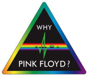 Pink Floyd Why Sticker