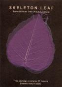 Purple Bo Leaf