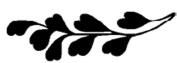 Magenta Self Cling Rubber Stamp Solid Fern 3.8cm x 1.3cm