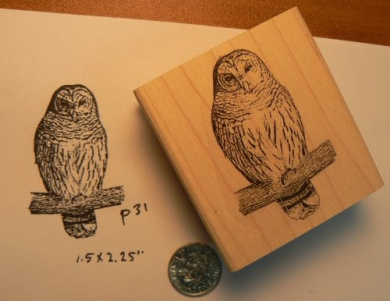 Owl rubber stamp P31