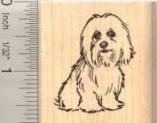 Coton de Tulear Dog Rubber Stamp