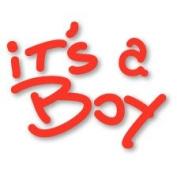 It's a Boy Phrase Easy Emboss Metal Stencil with Embossing Folder