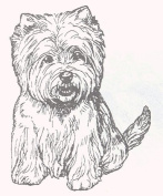 Dog Rubber Stamp - West Highland White Terrier-1E (Size