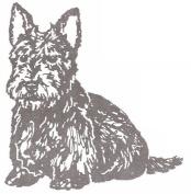 Dog Rubber Stamp - Scottish Terrier-1E (Size