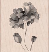 Hero Arts Petals of Beauty Woodblock Stamp