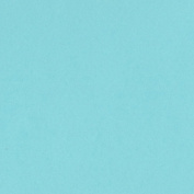 Bazzill Basics Paper T7-719 Card Shoppe Heavy Weight Cardstock, 25 Sheets, 30cm by 30cm , Robins Egg