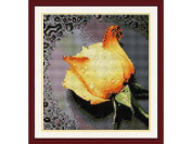 Happy Forever Cross Stitch, flowers, The rose with dew,yellow rose