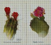 Art Needlepoint Cactus Studies Needlepoint Canvas