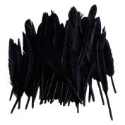 50pcs Home Decor Black Goose Feather